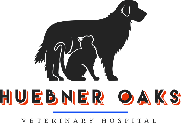 Huebner Oaks Veterinary Hospital